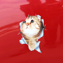 Macskás 3D autó matrica