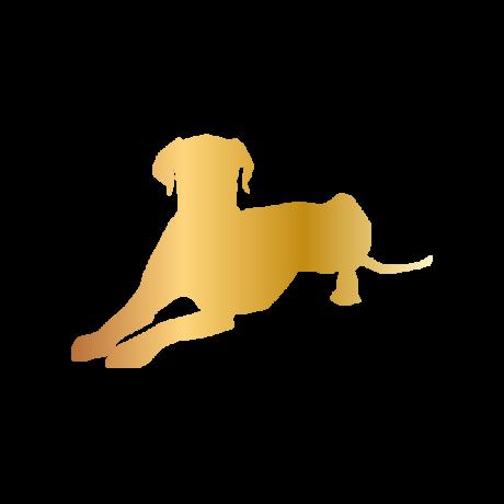 Dalmata kutya autó matrica arany #169