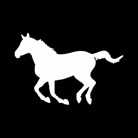Ügető ló autó matrica fehér #316