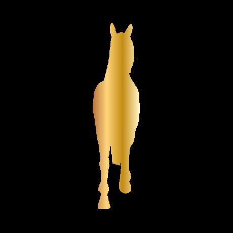 Ló szemből autó matrica arany #323