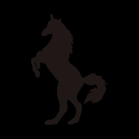 Két lábon álló ló autó matrica fekete #325