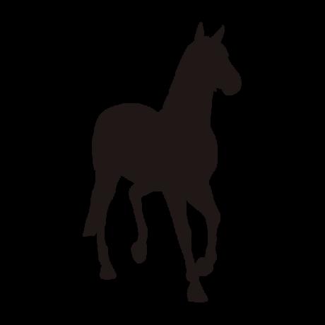 Lépegető ló autó matrica fekete #330