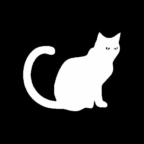 Meglepett macska autó matrica fehér #506