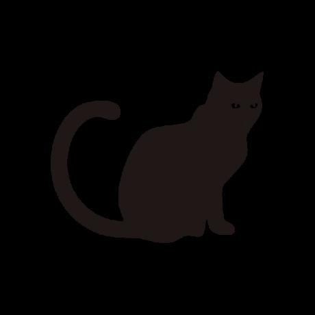 Meglepett macska autó matrica fekete #505