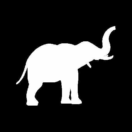 Ormányos elefánt autó matrica fehér #611