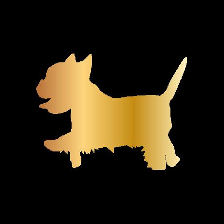 Yorki  kutya autó matrica arany #174