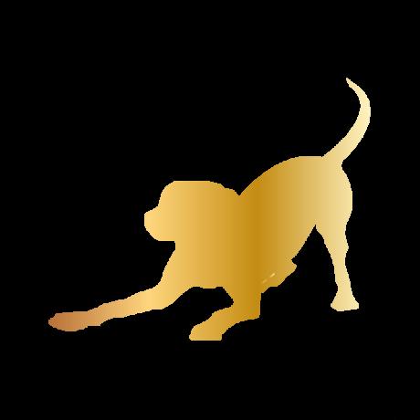 Játékos kutya autó matrica arany #189