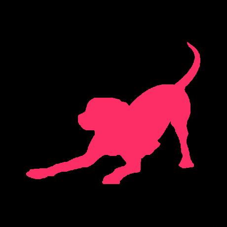 Játékos kutya autó matrica pink #188