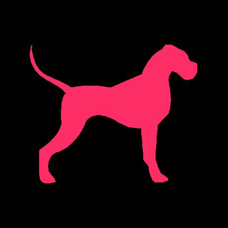 Német Dog kutya autó matrica pink #193