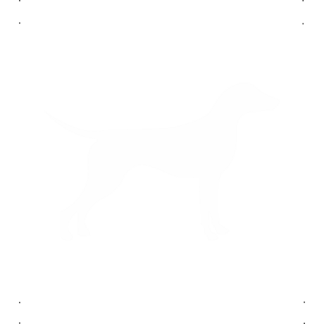 Német Pincser kutya autó matrica fehér #197