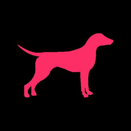 Német Pincser kutya autó matrica pink #198