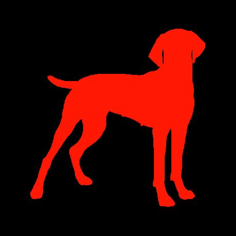 Vizsla kutya autó matrica piros #205