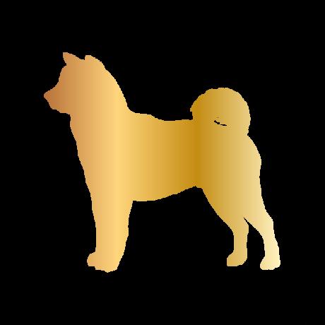 Akita kutya autó matrica arany #229