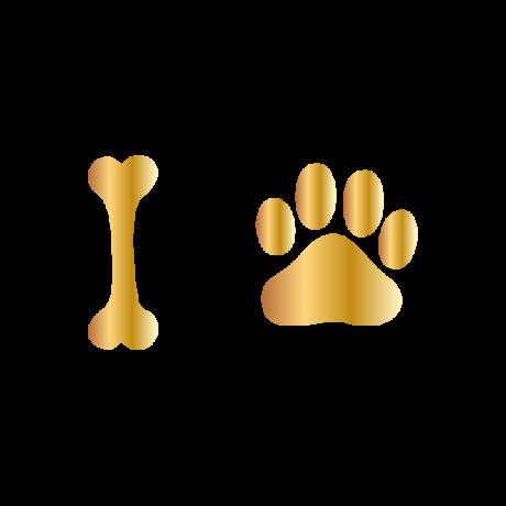 Csont-mancs autó matrica arany #244