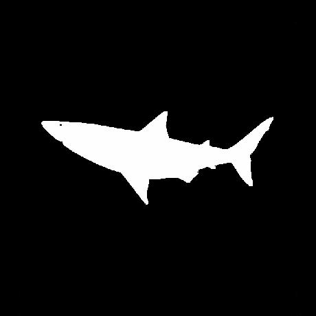 Cápa autó matrica fehér #586